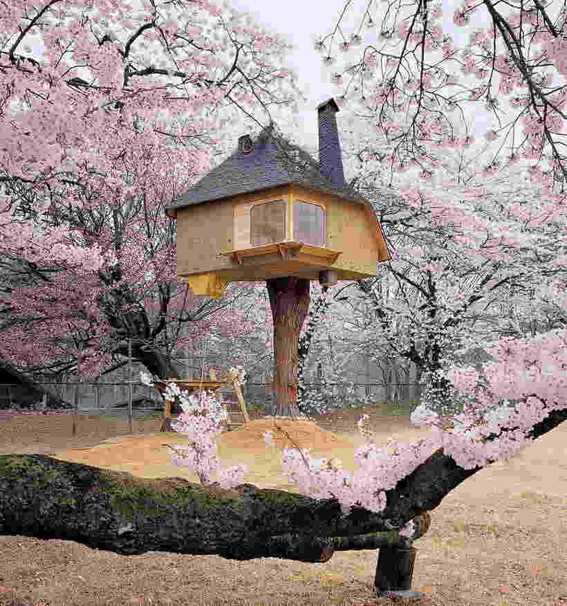 Дом на дереве — как построить проект своей мечты