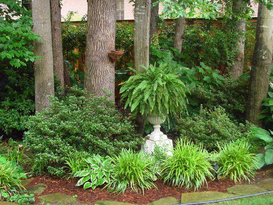 Папоротник садовый в дизайне
